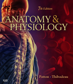 cover image - Anatomy & Physiology,7th Edition