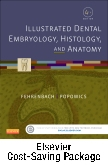 cover image - Illustrated Dental Embryology, Histology, and Anatomy - Text and Student Workbook Package,4th Edition