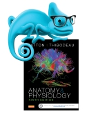 cover image - Elsevier Adaptive Learning for Anatomy and Physiology,9th Edition