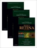 Ryans Retina