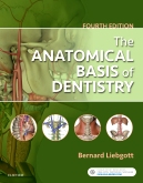cover image - The Anatomical Basis of Dentistry - Elsevier eBook on VitalSource,4th Edition