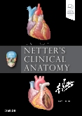 cover image - Netter's Clinical Anatomy,4th Edition