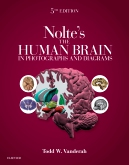 cover image - Nolte's The Human Brain in Photographs and Diagrams Elsevier eBook on VitalSource,5th Edition
