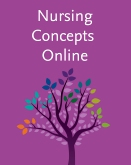cover image - Nursing Concepts Online for RN 2.0 - Classic Version,2nd Edition
