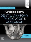 Wheelers Dental Anatomy, Physiology and Occlusion