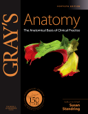 Grays Anatomy