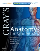 cover image - Gray's Anatomy for Students,2nd Edition