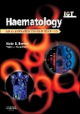 cover image - Haematology,4th Edition