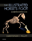 Illustrated Horse's Foot – Elsevier eBook on VitalSource