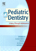 cover image - Pediatric Dentistry,4th Edition