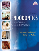 Endodontics, 4th Edition