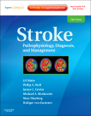 <b>Stroke, 5th Edition</b>
