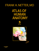 <b>Atlas of Human Anatomy, 5th Edition</b><br>Professional Edition