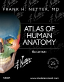 cover image - Atlas of Human Anatomy,6th Edition