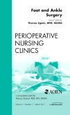 Foot and Ankle Surgery, An Issue of Perioperative Nursing Clinics
