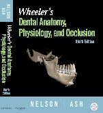 Wheeler's Dental Anatomy, Physiology and Occlusion - Elsevier eBook on VitalSource, 9th Edition