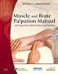 cover image - The Muscle and Bone Palpation Manual with Trigger Points, Referral Patterns and Stretching - Elsevier eBook on VitalSource