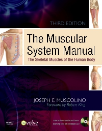 cover image - The Muscular System Manual - Elsevier eBook on VitalSource,3rd Edition