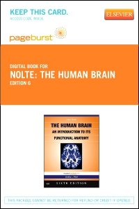 cover image - Nolte's The Human Brain - Elsevier eBook on VitalSource (Retail Access Card),6th Edition