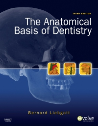 cover image - The Anatomical Basis of Dentistry - Elsevier eBook on VitalSource,3rd Edition