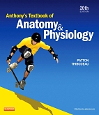 cover image - Anthony's Textbook of Anatomy & Physiology - EVOLVE,20th Edition
