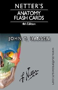 cover image - Netter's Anatomy Flash Cards Elsevier eBook on VitalSource,3rd Edition