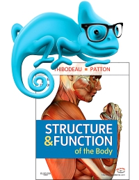cover image - Elsevier Adaptive Learning for Structure and Function of the Body,14th Edition