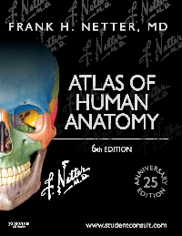 cover image - Atlas of Human Anatomy Elsevier eBook on VitalSource,6th Edition