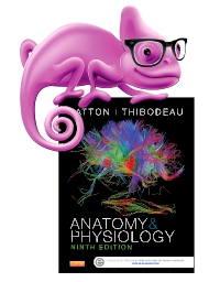 cover image - Elsevier Adaptive Quizzing for Anatomy and Physiology,9th Edition