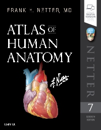 cover image - Atlas of Human Anatomy,7th Edition