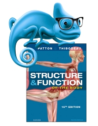 cover image - Elsevier Adaptive Learning for Structure and Function of the Body,15th Edition