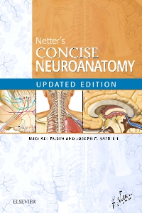 cover image - Netter's Concise Neuroanatomy Updated Edition Elsevier eBook on VitalSource