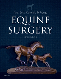 cover image - Equine Surgery - Elsevier eBook on VitalSource,5th Edition