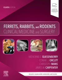 cover image - Ferrets, Rabbits and Rodents - Elsevier eBook on VitalSource,4th Edition