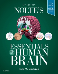 cover image - Nolte's Essentials of the Human Brain,2nd Edition