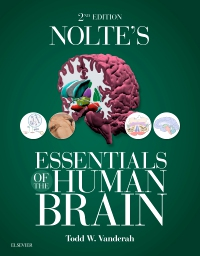 cover image - Evolve Resources for Nolte's Essentials of the Human Brain,2nd Edition