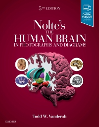 cover image - Nolte's The Human Brain in Photographs and Diagrams,5th Edition