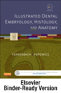 cover image - Illustrated Dental Embryology, Histology, and Anatomy - Binder Ready,4th Edition