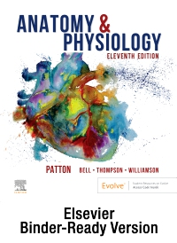 cover image - Anatomy & Physiology - Binder-Ready (includes A&P Online course),11th Edition