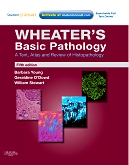 cover image - Evolve Resources for Wheater's Basic Pathology: A Text, Atlas and Review of Histopathology,5th Edition