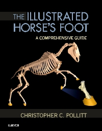 cover image - The Illustrated Horse's Foot
