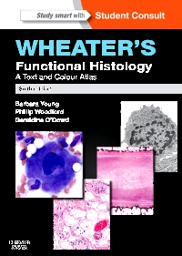 cover image - Wheater's Functional Histology,6th Edition