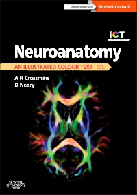 cover image - Evolve Resource for Neuroanatomy: an Illustrated Colour Text,5th Edition