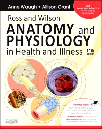 cover image - Ross and Wilson Anatomy and Physiology in Health and Illness - Elsevier eBook on VitalSource,11th Edition