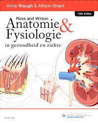 cover image - Ross en Wilson Anatomie en Fysiologie in gezondheid en ziekte - Elsevier eBook on VitalSource,12th Edition