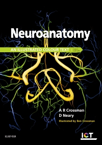 cover image - Neuroanatomy Elsevier eBook on VitalSource,6th Edition