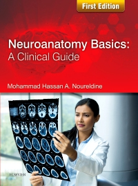 cover image - Neuroanatomy Basics: A Clinical Guide