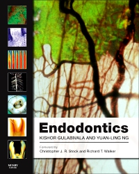 cover image - Endodontics - Elsevier eBook on VitalSource,4th Edition
