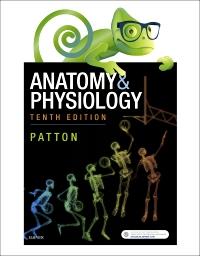 cover image - Elsevier Adaptive Quizzing for Anatomy & Physiology Australian and New Zealand 10th edition - Classic Version,10th Edition
