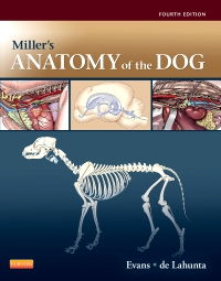 cover image - Miller's Anatomy of the Dog - Elsevier eBook on VitalSource,4th Edition